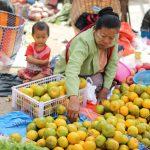 五日市(Five Days Market)